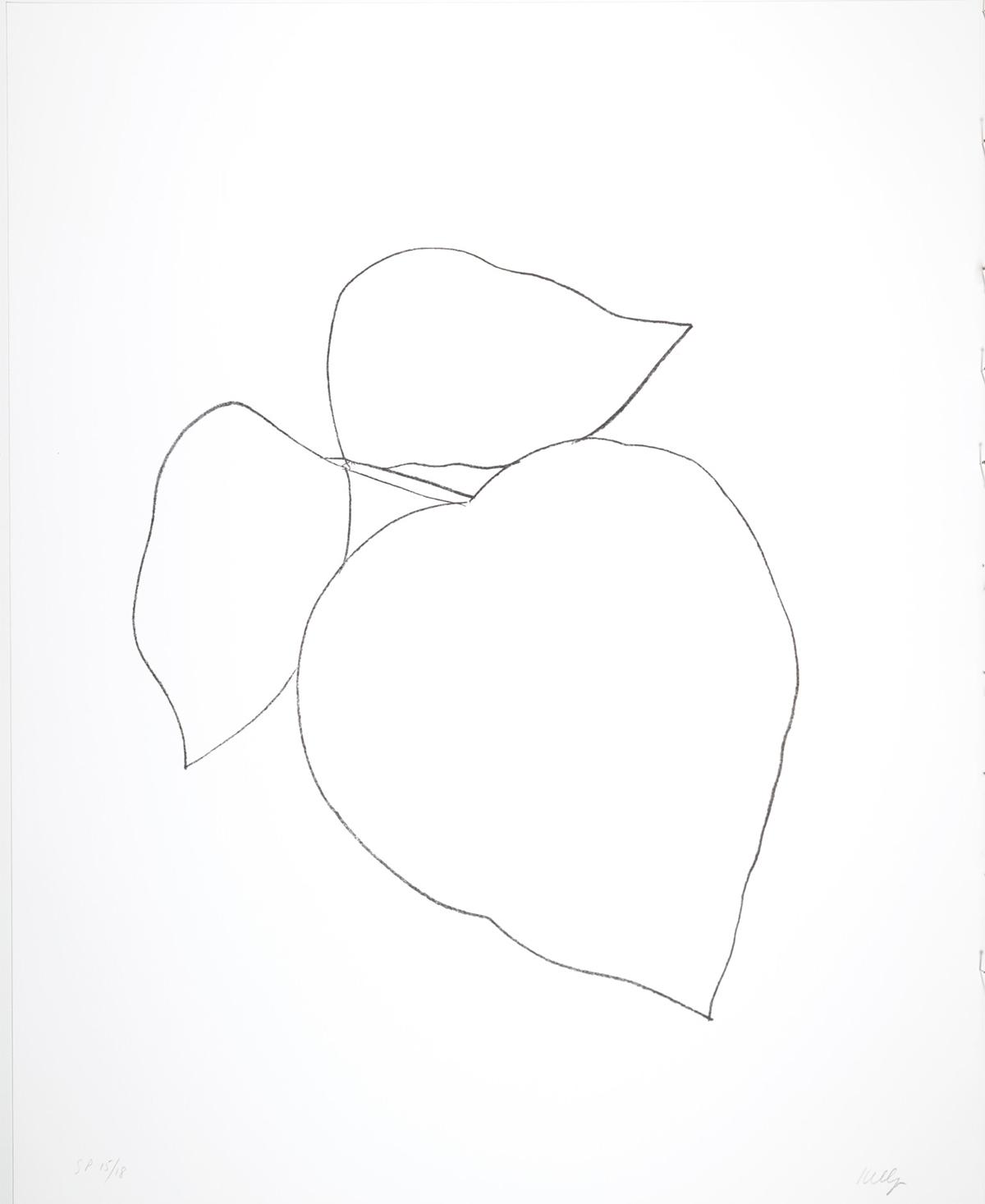 Leaves, 1997